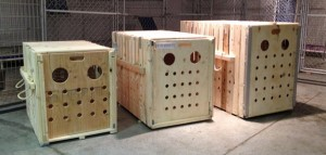 CR82-travel-container-dog-cage-chien-manoir-kanisha-302