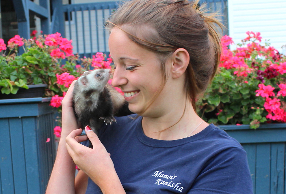 ferret-boarding-pension-furet-lea-manoir-kanisha-204