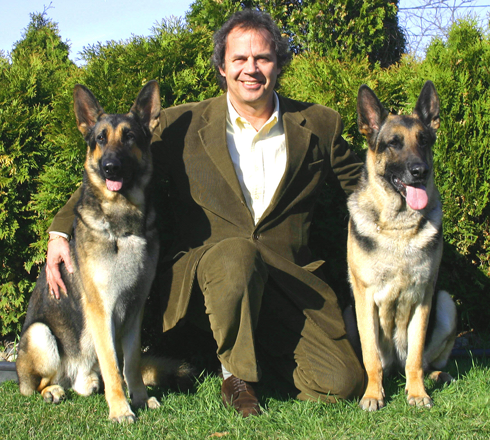 german-shepherd-berger-allemand-arnaud-michel-vanille-manoir-kanisha-6582