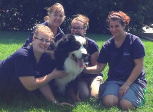 dog-relocation-fergus-alyssa-janet-karolina-alexandra-manoir-kanisha-2234