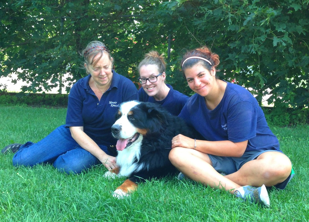 dog-relocation-fergus-janet-karolina-alexandra-manoir-kanisha-2226