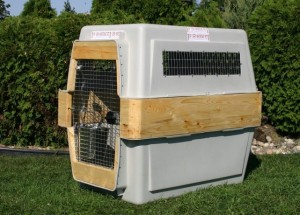 services-relocalisation-pet-relocation-extended-crate-e1339888961973-300x215
